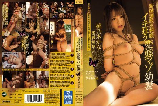 หนัง av ซับไทย Kana Momonogi IPX-052 มัดจนเพลียโถเมียยากูซ่า