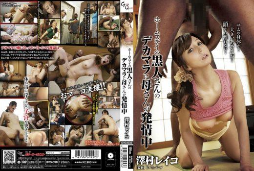 GVG-038 ซับไทย Reiko Sawamura ติดใจของดำสองกำไม่มิด
